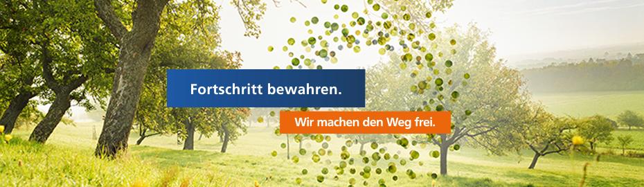 Jubiläumsprojekt 2013: Fortschritt bewahren.